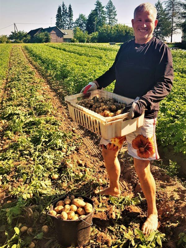 Meelis värske kartuliga