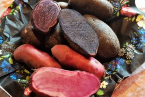 Värviline Eesti kartul