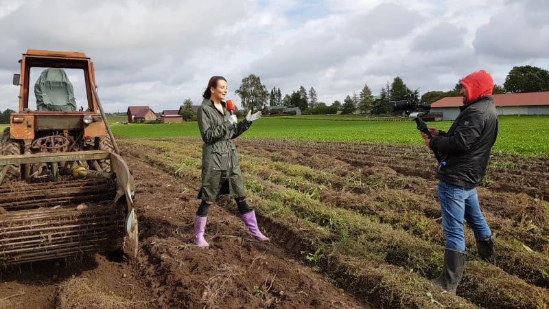 TV3 Rebase talu kartulipõllul